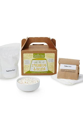 Dairy Free Mozzarella and Ricotta Cheese Kit