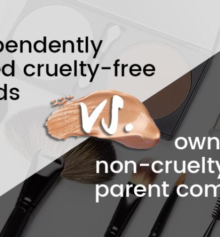 Parent Company Animal Testing Explained