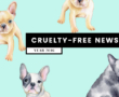 List of Cruelty-Free & Vegan Nail Polish Remover