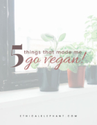 Is Nip and Fab Cruelty-Free & Vegan in 2021? (What You Need To Know!)