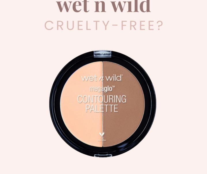Is wet n wild Vegan or Cruelty-free in 2019?