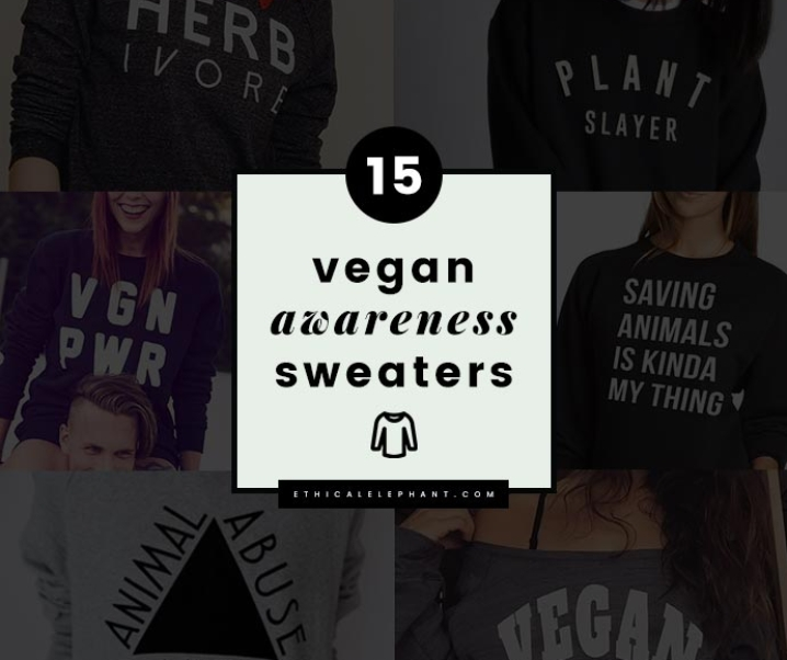 15 Cute and Cozy Vegan Sweatshirts to Raise Awareness