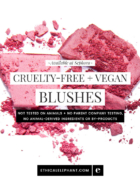 Cruelty-Free & Vegan Primers at Sephora
