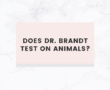 Does Love Beauty and Planet Test on Animals?