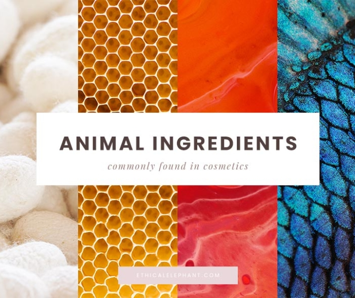 These Common Animal-Derived Ingredients Used in Cosmetics are Not Vegan
