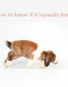 LaRitzy Cruelty-Free Subscription Box