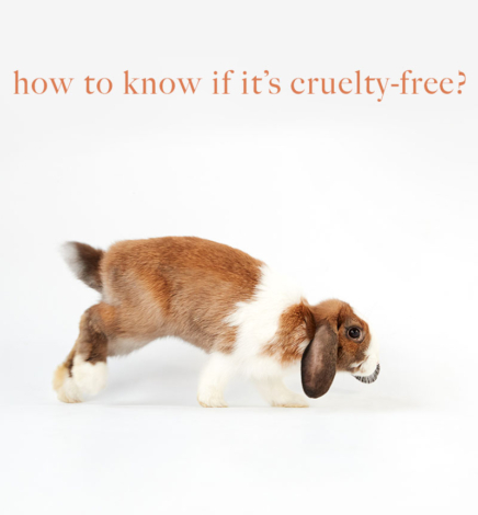 Is it Cruelty-Free? 5 Ways To Know If Cosmetics Are Tested On Animals