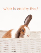 Is Amika Cruelty-Free? | Amika Vegan Product List (2020)