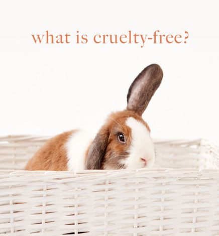 What Does Cruelty-Free Mean in 2020?