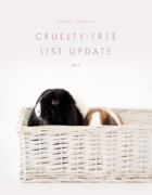 Vegan & Cruelty-Free Cleaning Products and Brands