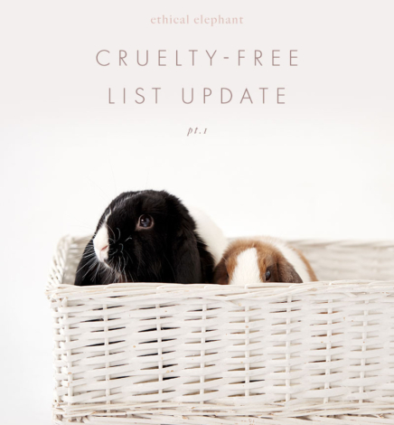 Cruelty-Free Brand List – Update Pt. 1