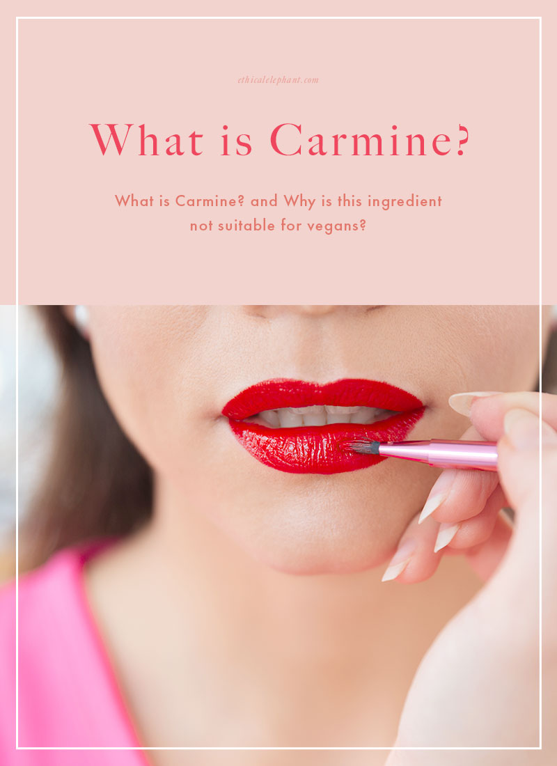 What is carmine?