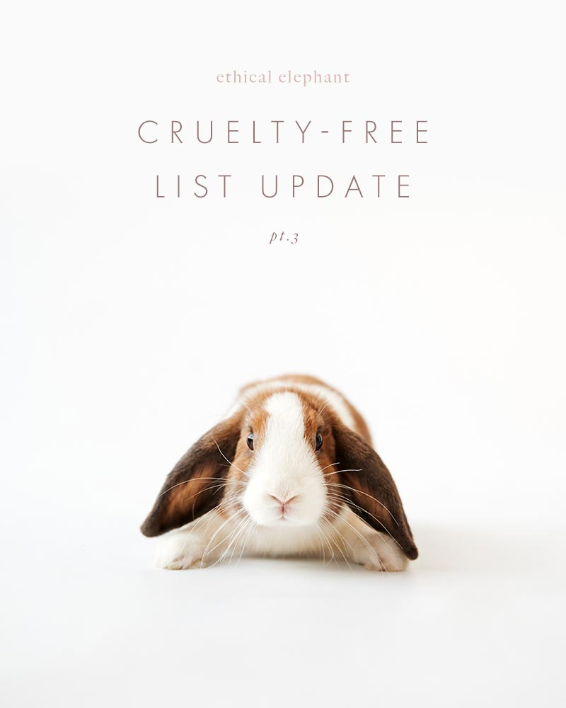 ethical elephant's cruelty-free brands list just got updated!