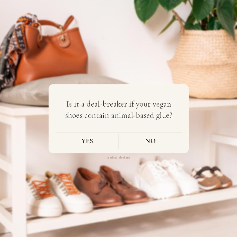 question: is it a deal-breaker if your vegan shoes contain animal-based glues?