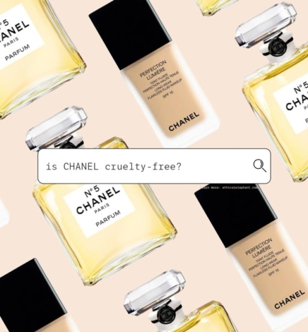 Is Chanel Cruelty-Free in 2021? (What You Need To Know Before You Buy!)