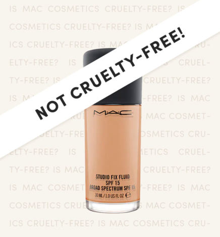 Is MAC Cruelty-Free in 2021? (What You Need To Know Before You Buy!)