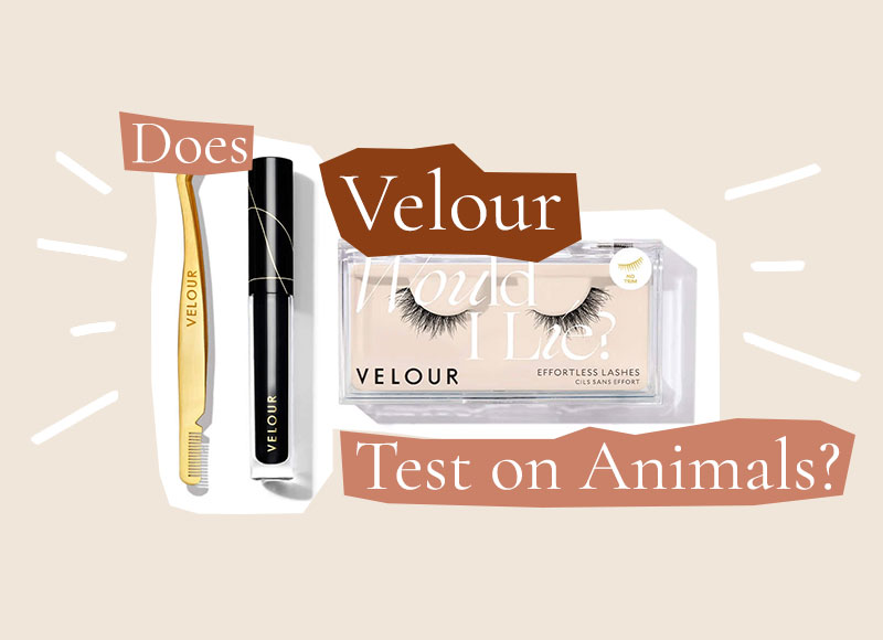 Does Velour Test on Animals?