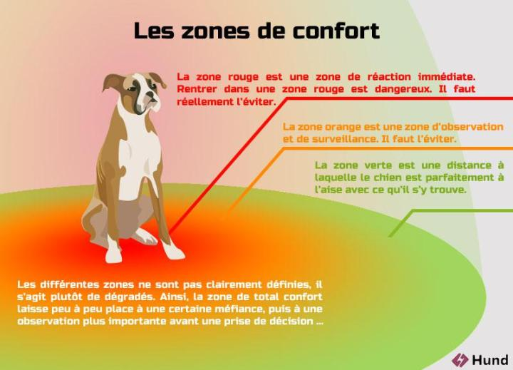 Autour du chien, trois zones de confort