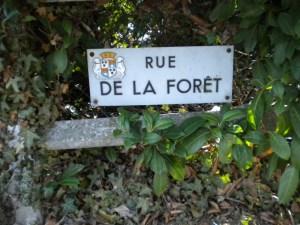 jpg/La_Rue_de_la_Foret_a_La_Rochette.jpg