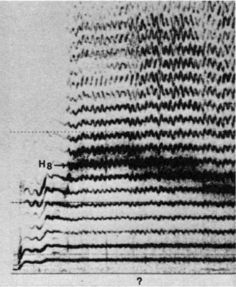 Fig. 17: Imitation par Trân Quang Hai du style non identifié de la fig. 14.