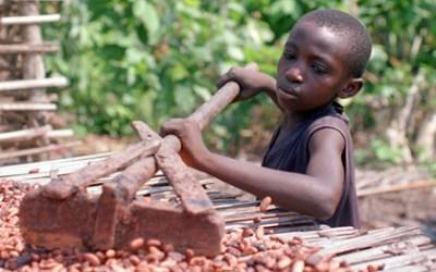 Παιδική εργασία και δουλεία στη βιομηχανία σοκολάτας