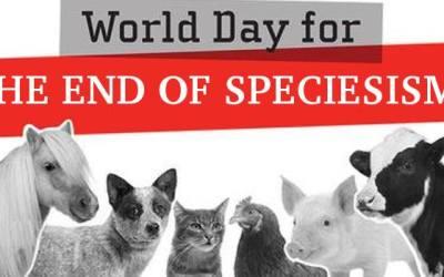 Παγκόσμια Ημέρα για το ΤΕΛΟΣ του Σπισισμού – 25/8 – Πανελλαδική δράση