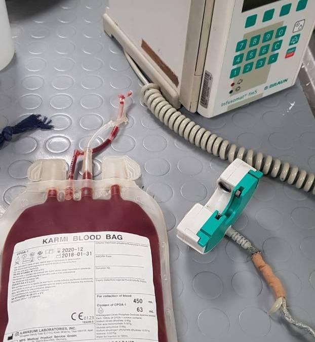 Αιμοδοσία ζώων