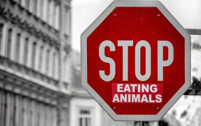 Θα τερματίσει ο βιγκανισμός την εκμετάλλευση των ζώων;