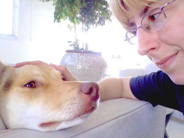 Consulta Comportamental para cães