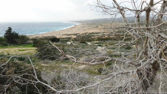 Cavo Greco. Cyprus