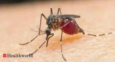 Key malaria vaccine set for field trial - ET HealthWorld