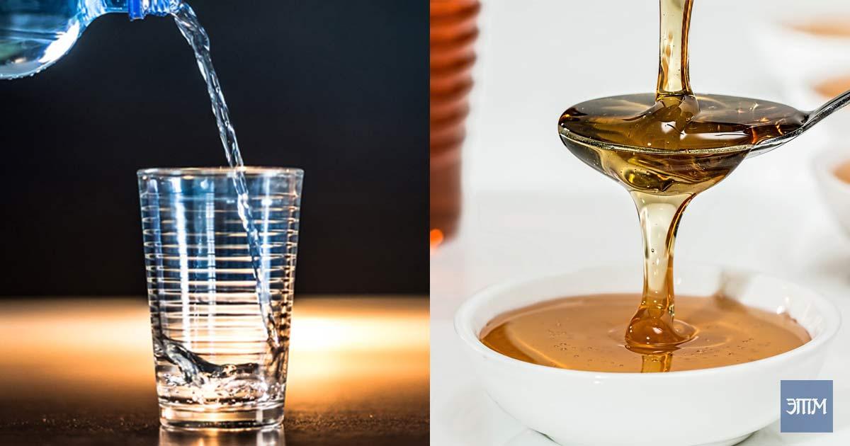Мёд. Этот таинственный мир