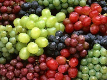 2asti-grapes