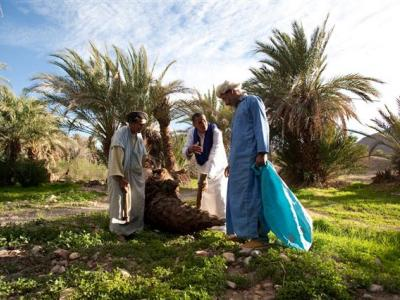 Morocco addresses climate change: A world concern affecting tourism