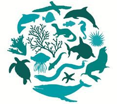 Caribbean Tourism Organization and International Union for Conservation of Nature issue joint statement on International Day for Biological Diversity