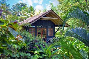 Sustaining serenity in Negril, Jamaica
