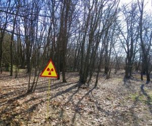 Massive forest fire threatens Chernobyl 'Exclusion Zone'