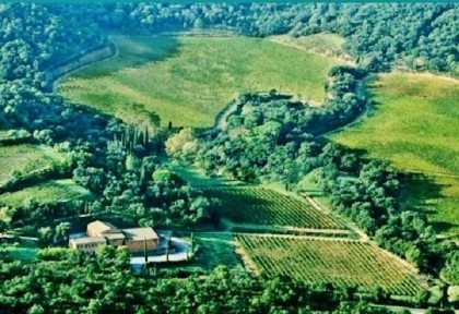 New York developer acquires French winery: Chateau de Chausse