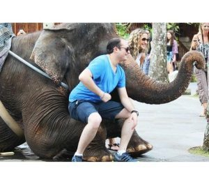 Report: Wildlife tourist attractions in Bali are a living hell for animals