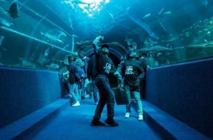 Event tourism boosts high season arrivals in Cape Town