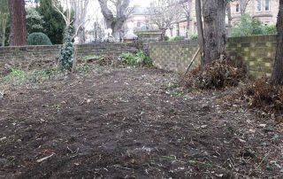 ETNA Garden after DofE clearance