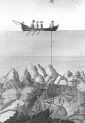 Pesca del corall