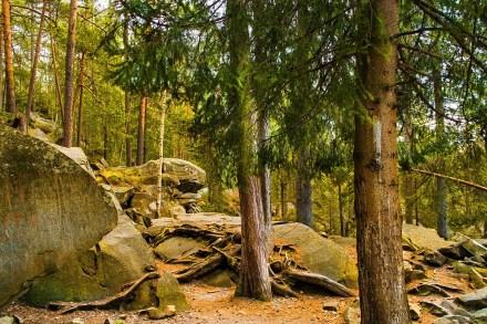 Стежка Довбуша | скелі Довбуша | Тропа Довбуша | скала Довбуша