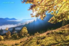 Осенние туры по Украине | туры на осень