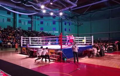 Турнир по боксу памяти тренера Геннадия Почуева