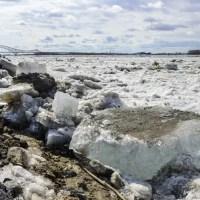 Ледоход пошел в Югре на реке Конде
