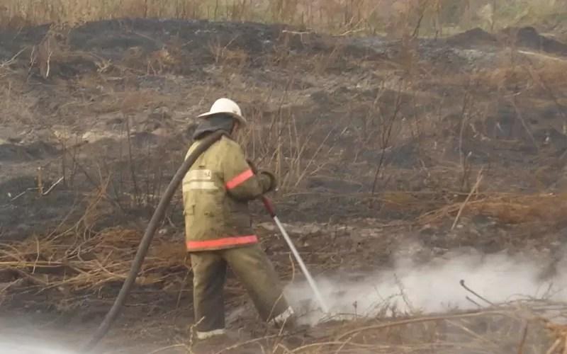 В связи с установившейся теплой погодой ежедневно на территории округа возникают опасные очаги горения сухой травы.