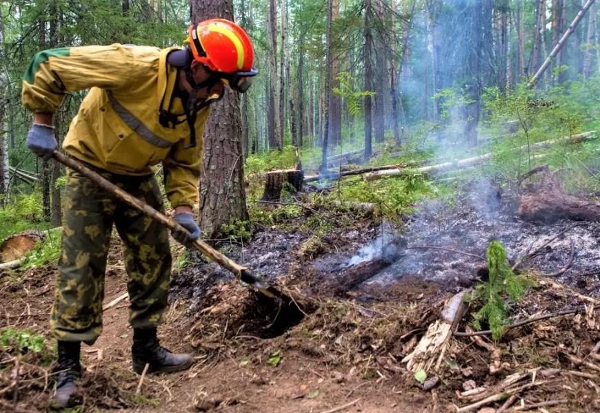 За неделю в Югре потушили 40 лесных пожаров