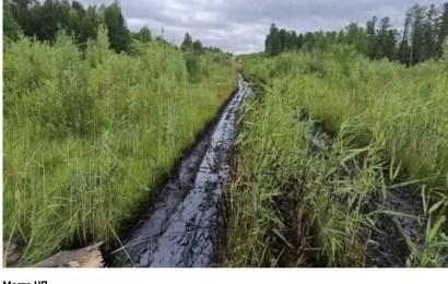 Срочно! В Югре на месторождении Роснефти произошёл разлив водонефтяной эмульсии на площади 700 м2