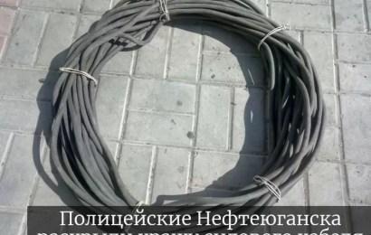 Полицейские Нефтеюганска раскрыли кражу силового кабеля.
